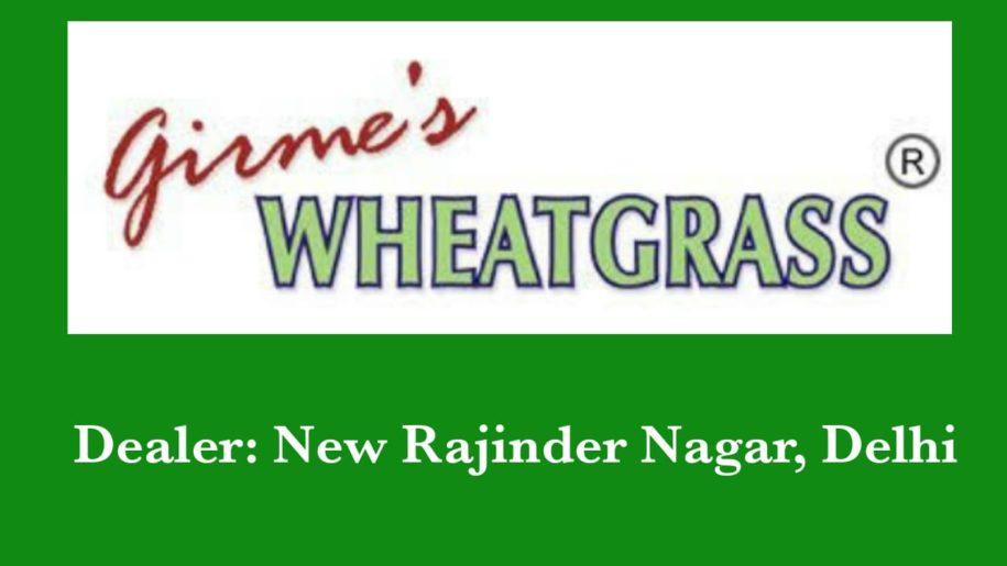 Girmes-Wheatgrass-Powder-Suppliers-Delhi