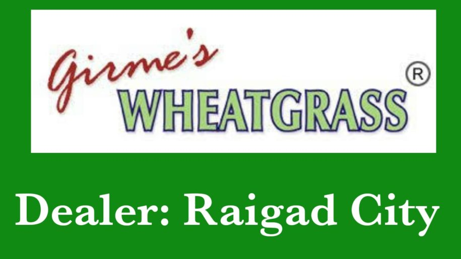 Raigad City, Wheatgrass Powder Dealer