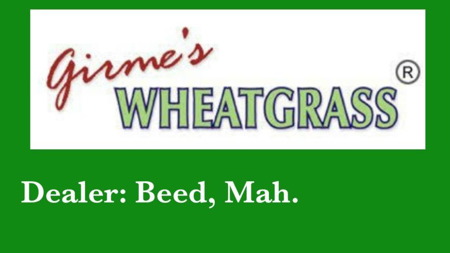 Girme's Wheatgrass Powder Dealer Beed