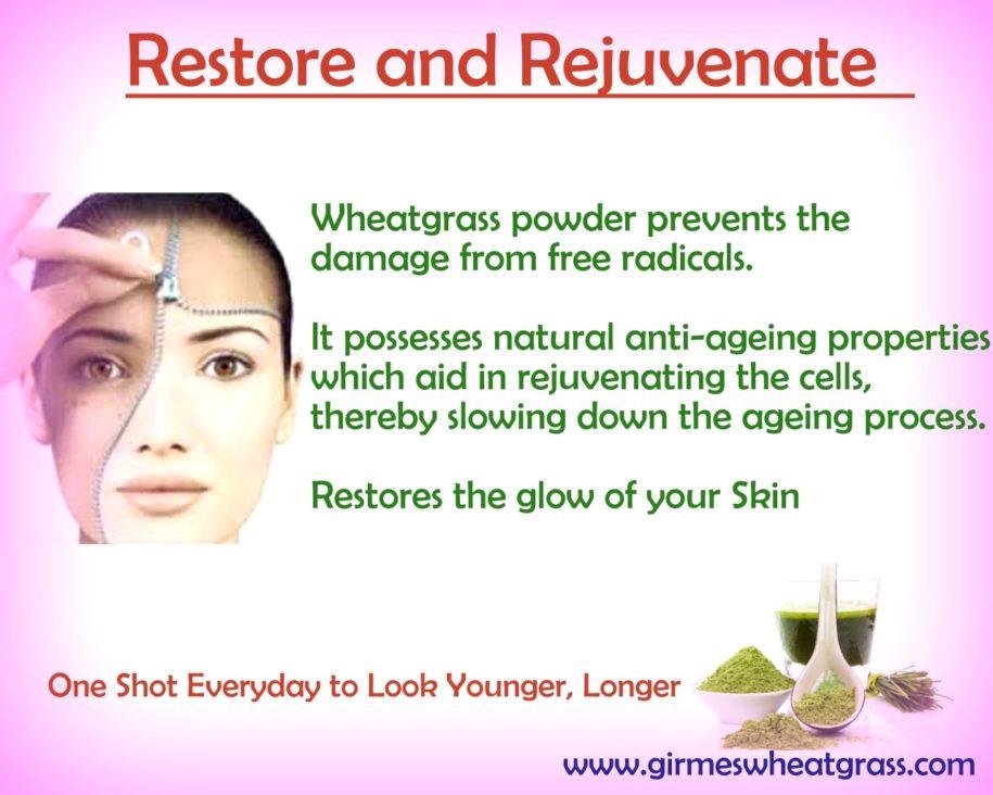 Anti Aging Benefits Of Wheatgrass Powder