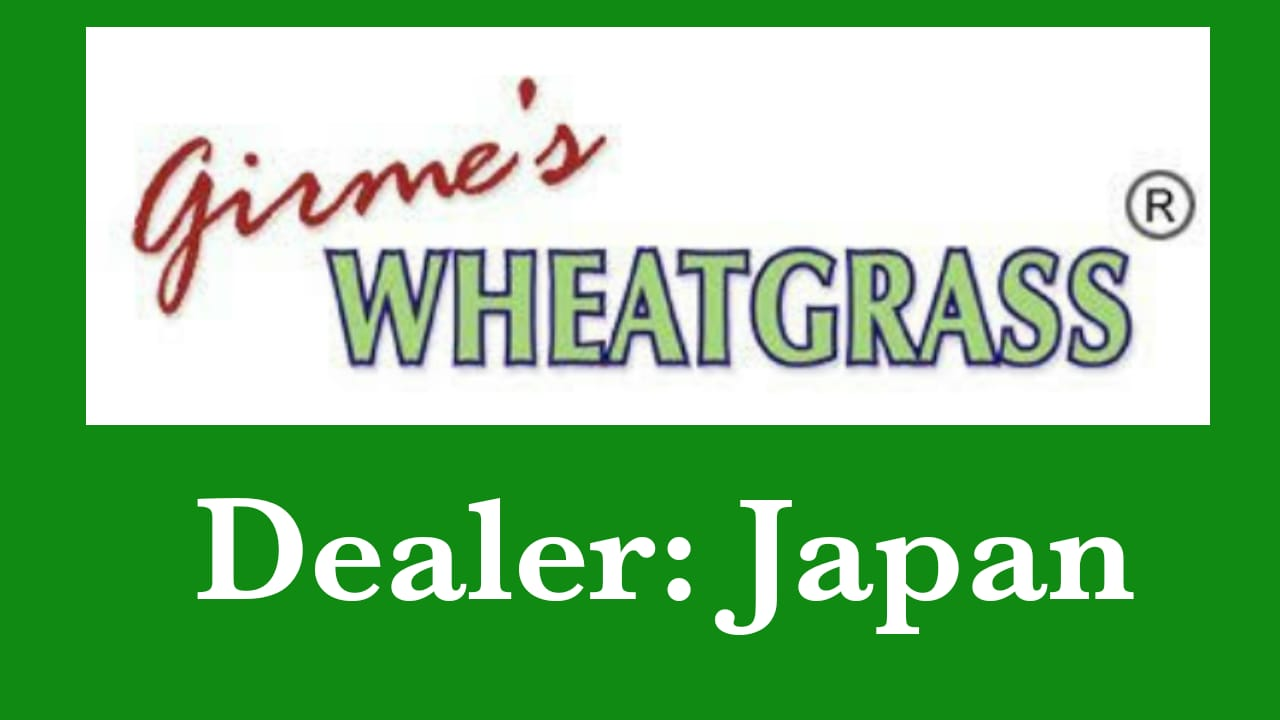 Wheatgrass Japan