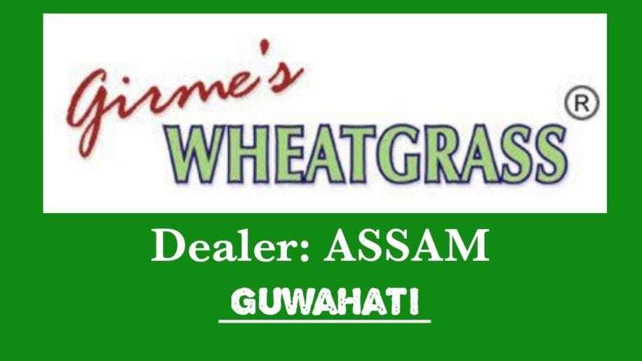 Girme's Wheatgrass Powder Dealer – Guwahati Assam